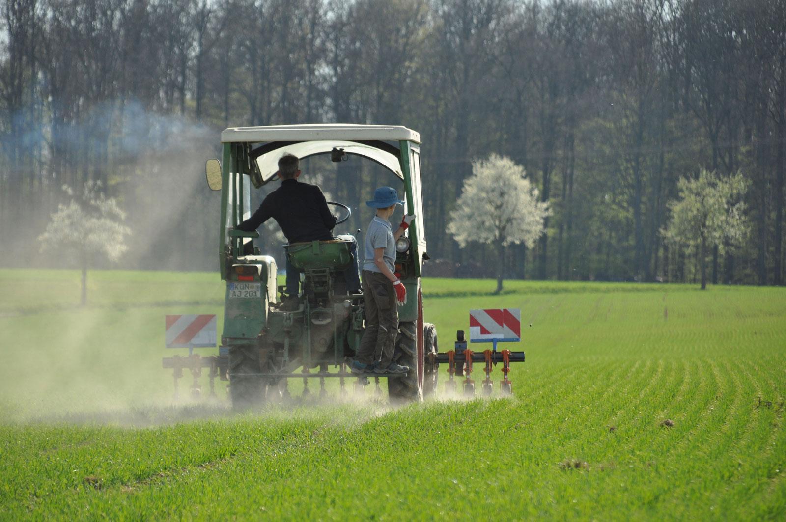 Schonende_Landwirtschaft_Hacke_statt_Striegel